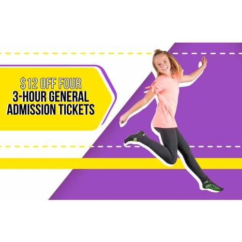 Family More Pack - $12 off Four 3-hour General Admission Tickets